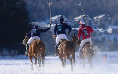 Snow Polo In Tremblant